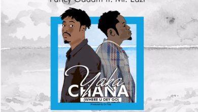 Photo of Fancy Gadam (ft. Mr Eazi) – Yaka Chana (Where U Dey Go)