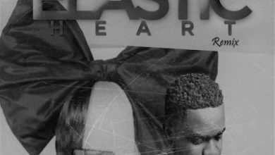 Photo of Sia ft Sarkodie – Elastic Heart Remix (Mixed By Saint Oracle)