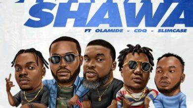 Photo of DJ Neptune – Shawa Shawa ft. Olamide x Larry Gaaga x Slim Case x CDQ