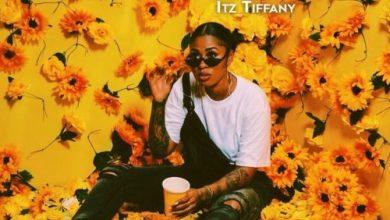 Photo of Download : Itz Tiffany – Cotyledon (Prod. by Richie Mensah)