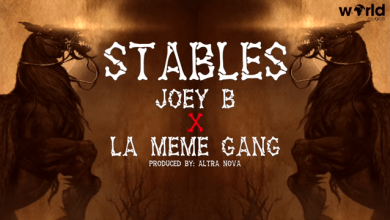 Photo of JOEY B FT LA MÊME GANG – STABLES (OFFICIAL LYRICS VIDEO)