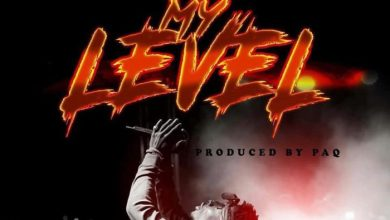 Photo of Download : Shatta Wale – My Level (Prod. By Paq)