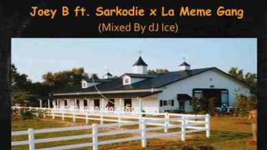 Photo of Download : Sarkodie x Joey B x La Meme Gang – Stables Re-Up (Mixed By Dj Ice)