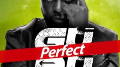Photo of Download : Guru – Perfect (Prod by DareMameBeatz)
