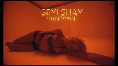 Photo of Video : Seyi Shay – Gimme Love Ft Runtown
