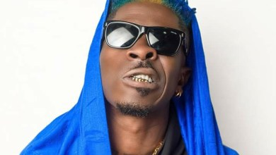 Photo of Download : Shatta Wale – Dem Seh