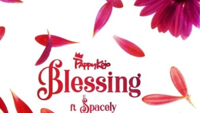 Photo of Download : Pappy Kojo Ft Spacely – Blessing (Prod. by Nova)