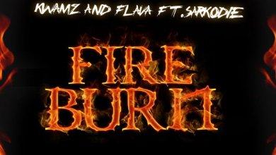 Photo of Download : Kwamz & Flava Ft. Sarkodie – Fire Burn