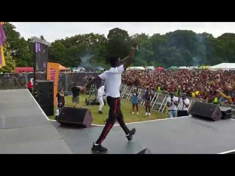 Kuami Eugene - Live at Party In The Park 2019