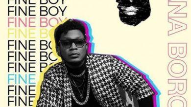 Photo of Download : Nana Boroo – Fine Boy
