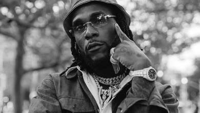 Photo of Download : Burna Boy – My Journey