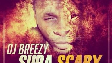 Photo of DJ Breezy Ft Shatta Wale x D-Black x Sarkodie x Mugeez x E.L – Supa Scary
