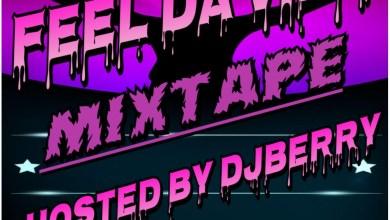Photo of Feel Da Vibe Mixtape (Hosted By Dj Berry)