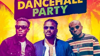 Photo of Reggie 'N' Bollie Ft Samini – African Dancehall Party