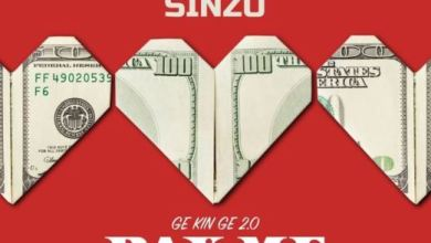 Photo of Dammy Krane X Sinzu – Pay Me My Money (Remix 2.0)