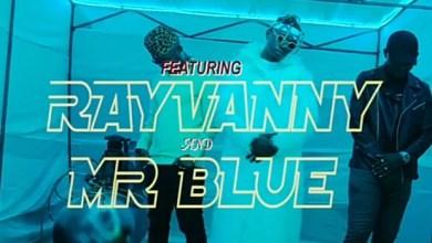 Photo of Lyrics : Nyandu Tozzy Ft Rayvanny & Mr Blue – Mawe