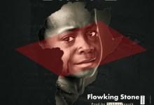 Photo of Flowking Stone – Survive Lyric Video