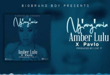 Photo of Amber lulu Ft Pavlo – Ng'ang'ania