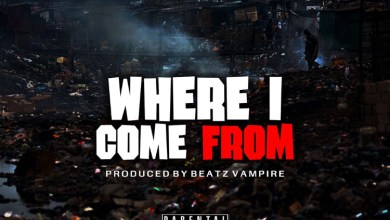 Photo of Shatta Wale – Where I Come From (Prod By Beatz Vampire)