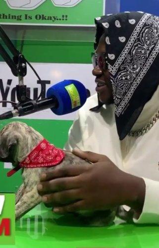 Medikal - My Puppy Looks Like Strongman - Video Here