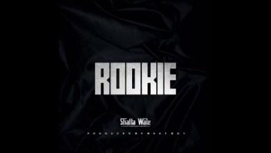 Photo of Shatta wale – Rookie