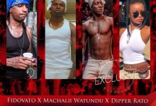 Photo of FidoVato X MachaliiWatundu X DipperRato – Wamejimicha