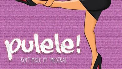 Photo of Kofi Mole – Pulele! Ft Medikal (Prod By BPM Boss)