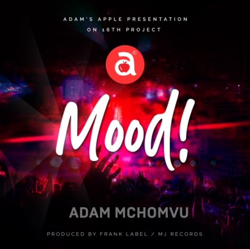 Adam Mchomvu Ft Dibo – Mood