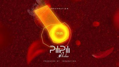 Photo of Ibrahnation – Pilipili Hoho