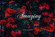 Orbit Makaveli – Amazing