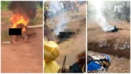 Guy Burnt 2 Death 4 Allegedly Stealing N2000 In Benue - Watch