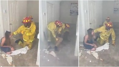 Fire Fighter Saves A Guy From A Burning Hotel Room Then Finds Out His Wife Was Inside - Video Below