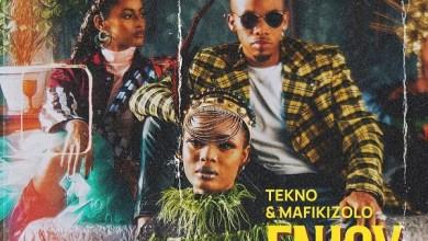 Photo of Tekno – Enjoy (Remix) Ft Mafikizolo (Prod By Blaize Beatz)