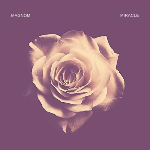 Magnom – Miracle