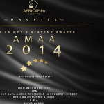 African Movie Academy Awards (AMAA) 2014: Who Wins What?