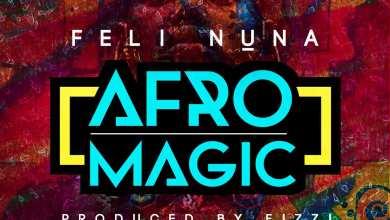 Feli Nuna - Afromagic artwork