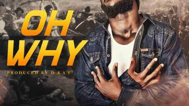 Photo of Audio: Oh Why by Zeal King