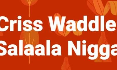 Salala Niggas by Criss Waddle