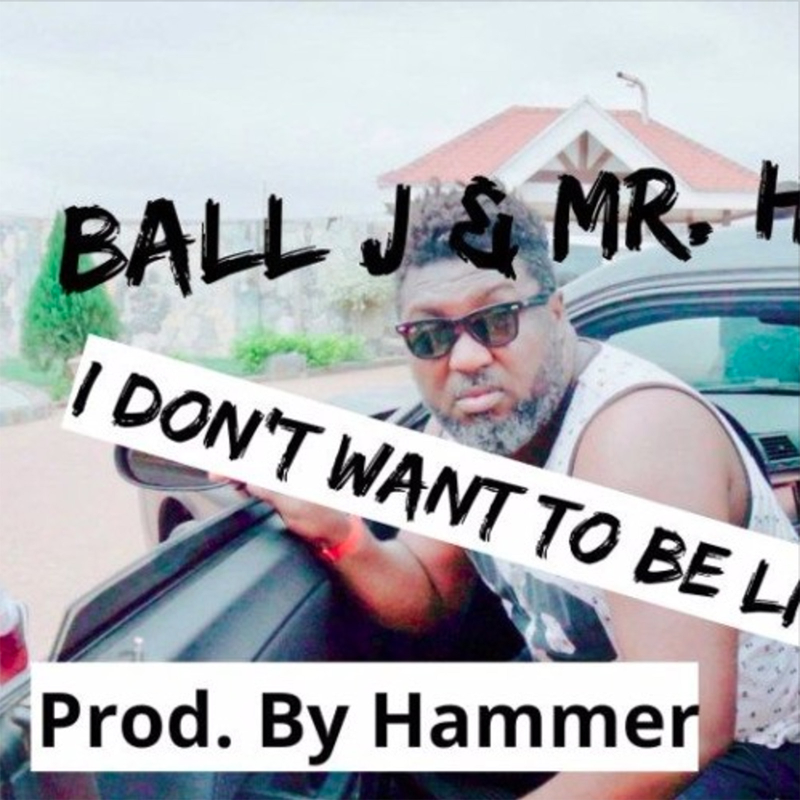 I Don't Want To Be Like Them by Ball J