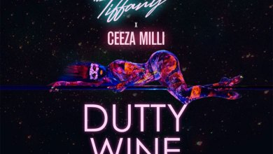 Photo of Audio: Dutty Wine by DJ Mic Smith & Itz Tiffany