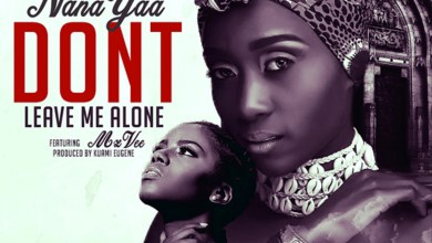 Photo of Audio: Don't Leave Me Alone by NanaYaa feat. MzVee