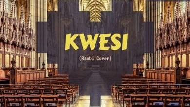Photo of Audio: Kwesi (Bambi cover) by Edna