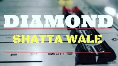 Photo of Audio: Diamond by Shatta Wale