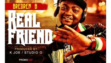 Real Friends by Breden B