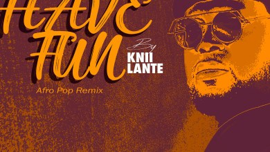 Have Fun (Afro Pop Remix) by Knii Lante