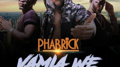 Photo of Audio: VaMia We by Phabrick feat. DopeNation