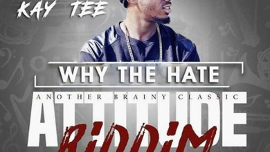 Why The Hate by Kay Tee