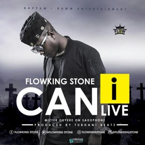 Can I Live by Flowking Stone