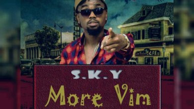 Photo of Audio: More Vim by S. K. Y De Tamale Boy