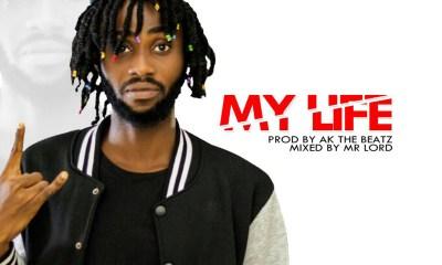 My Life by Skye Brain